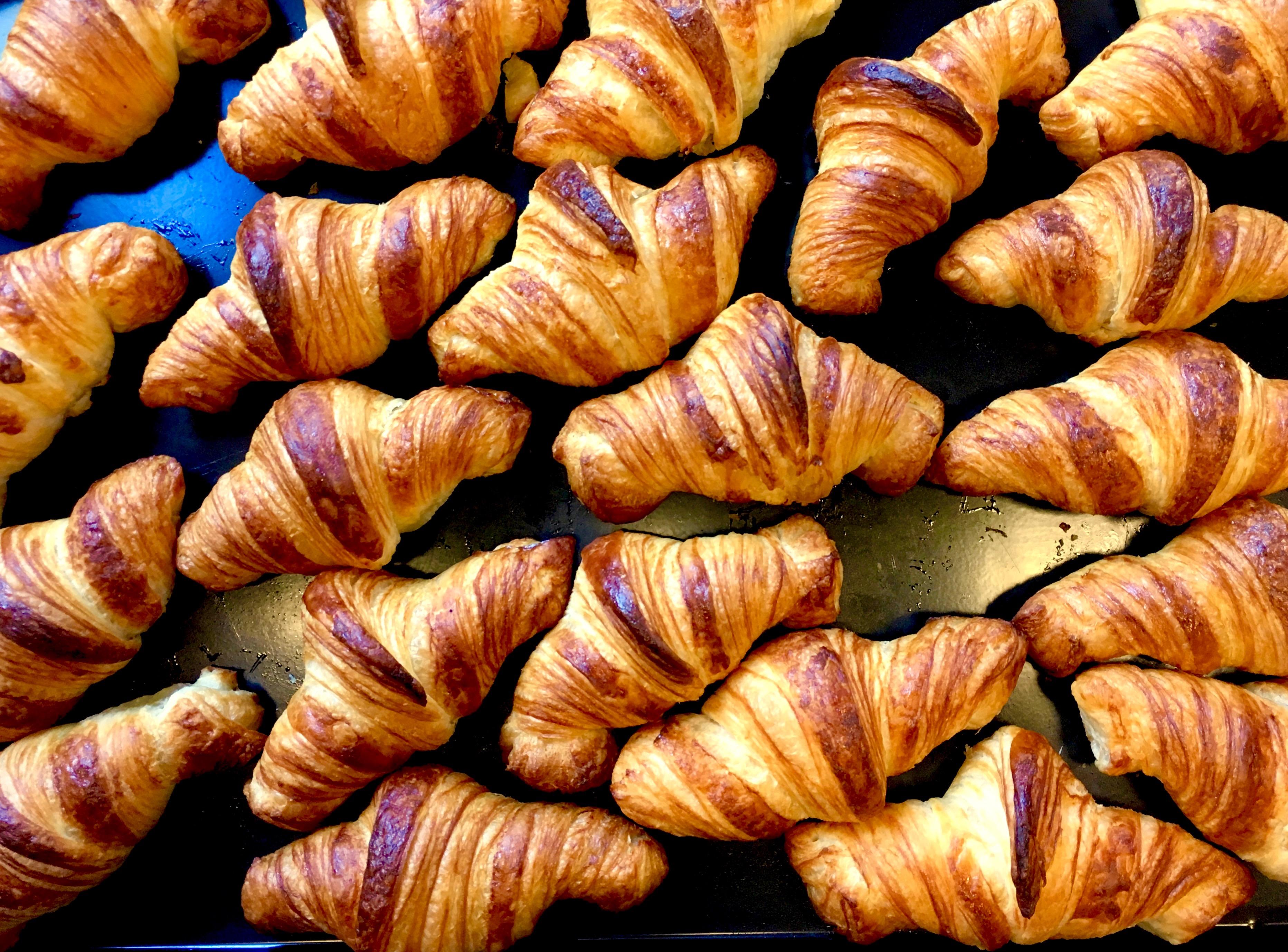 サンチャにクロワッサンがやってくるまで。Welcome SANCHA's new item, Croissant.